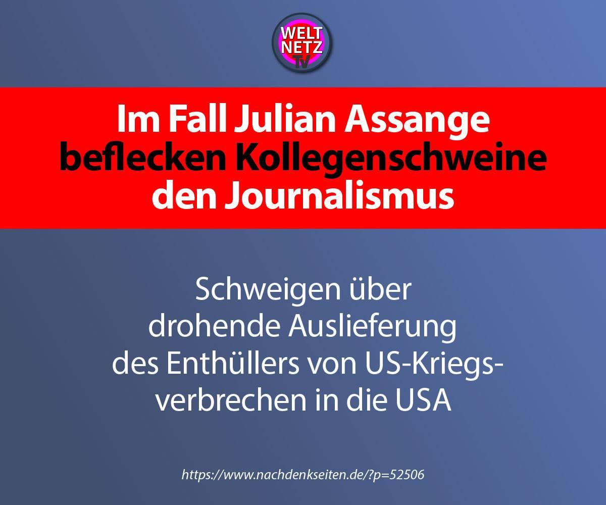 Im Fall Julian Assange beflecken Kollegenschweine den Journalismus