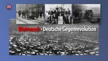 Vergessener Blutrausch: Die deutsche Gegenrevolution