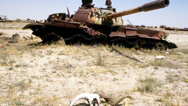 Leiser Tod im Irak. Interview mit Karin Leukefeld. Bild © Markus Matzel