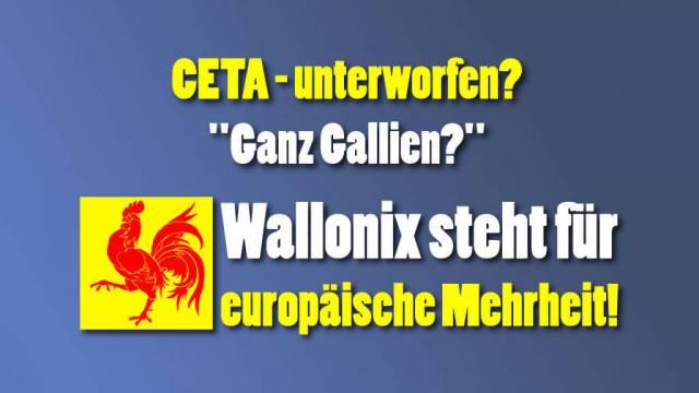 Wallonix
