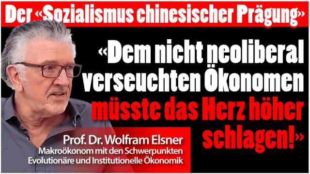 Wolfram Elsner
