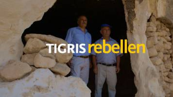 Tigris-Rebellen von Nedim Hazar Bora