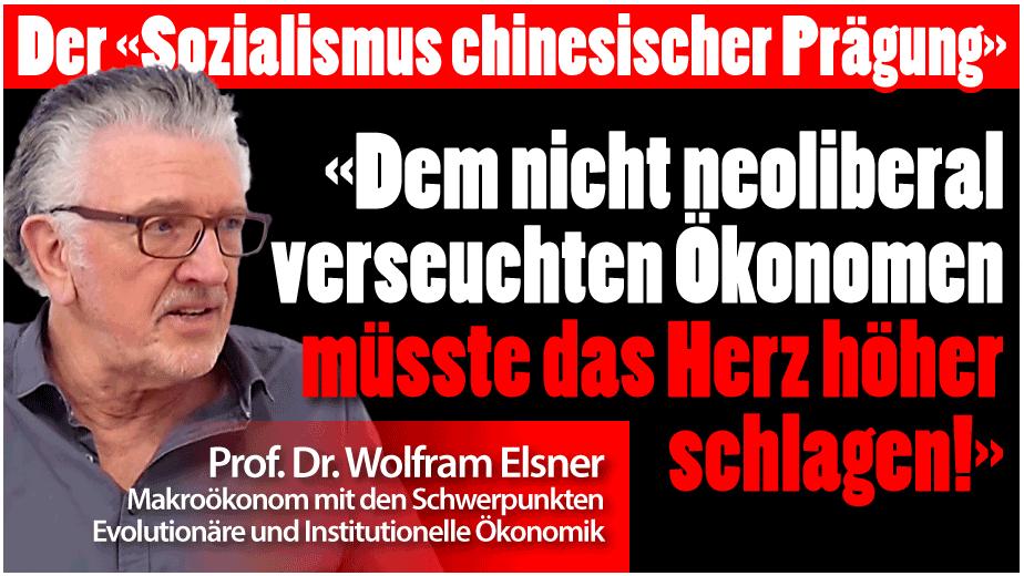 """Wolfram Elsner: Der """"Sozialismus chinesischer Prägung"""""""